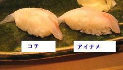 Kiraku021_1